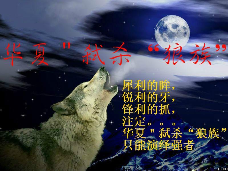 另外狼族将全力进军八号的君王新区!请各路英雄加盟招收条...