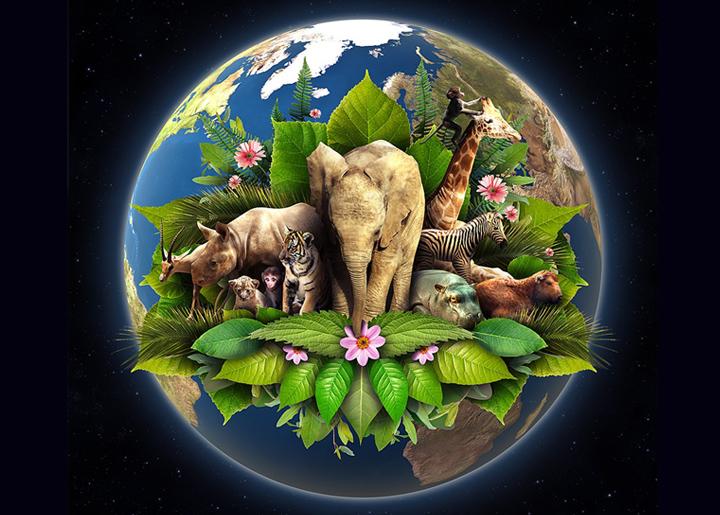 """大地没有绿色,人心不是红色,""""世界地球日""""环保游戏鉴赏"""