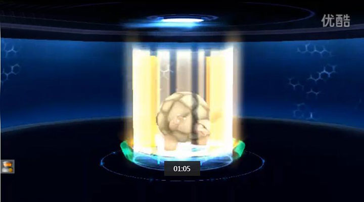 口袋妖怪3DS 宠物进化视频演示