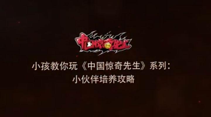 《中国惊奇先生》世界格斗冠军小孩教学亚虎国际之小伙伴培养篇